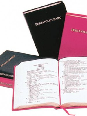 Alkitab VP